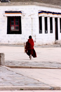 Sofia Bernardi  The Young Monk,